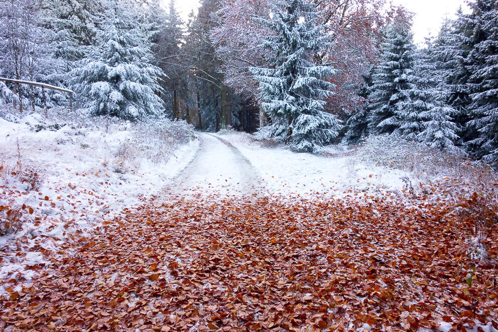 Herbstende