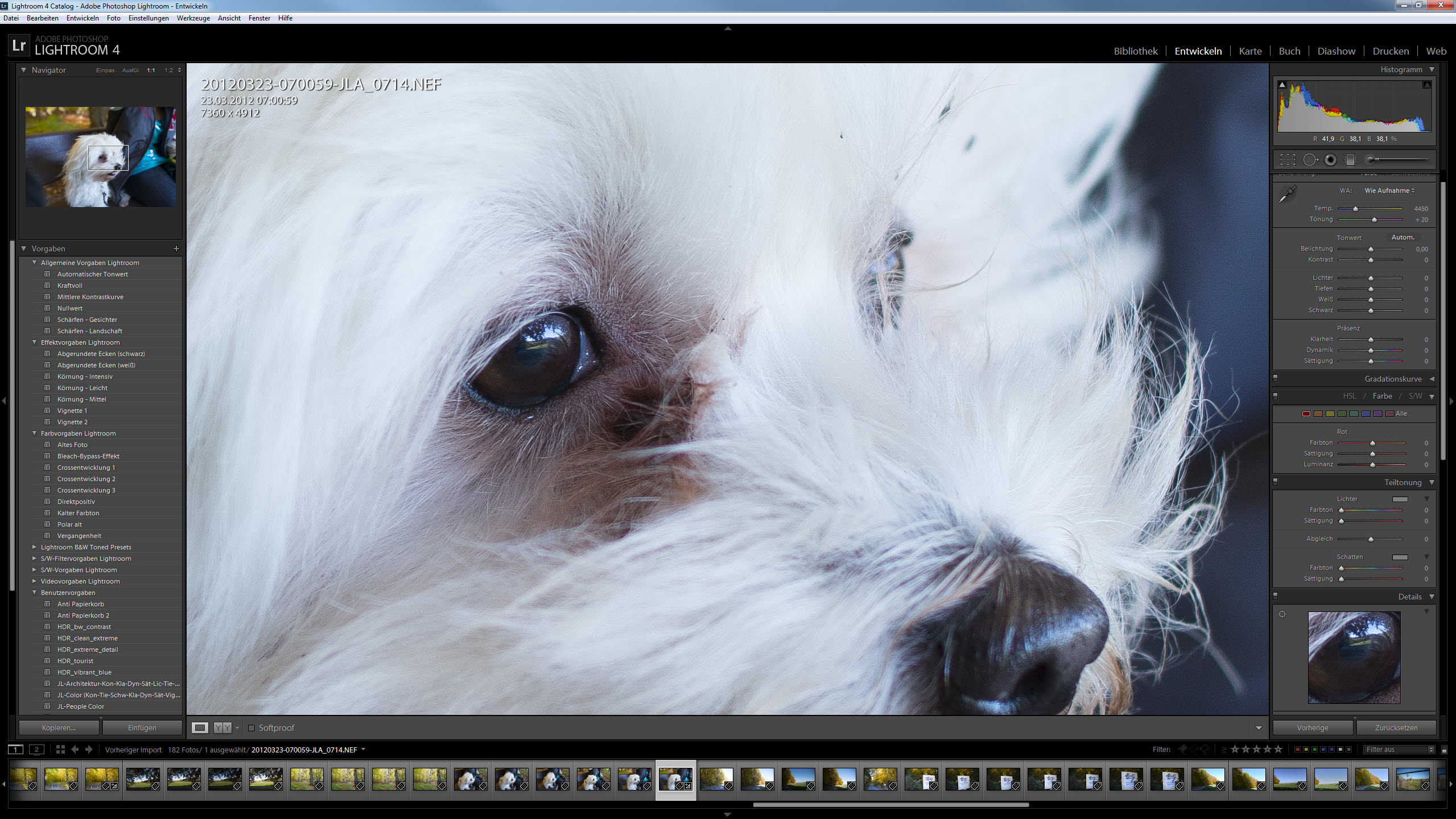 Nikon AFS 28 1.8G an Nikon D800 - 100% Crop