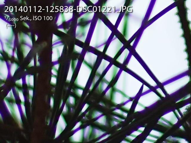 2014-01-12-SummcronR90-CA-02