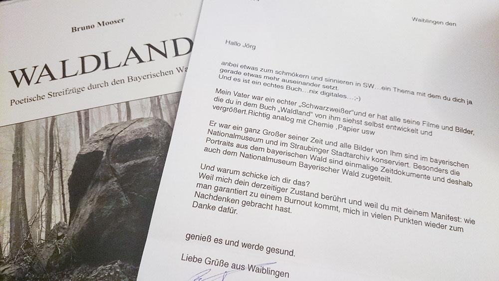 2014-10-02-Waldland